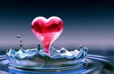 Nuôi dưỡng tim và các bộ phận cơ thể qua cách uống nước đúng