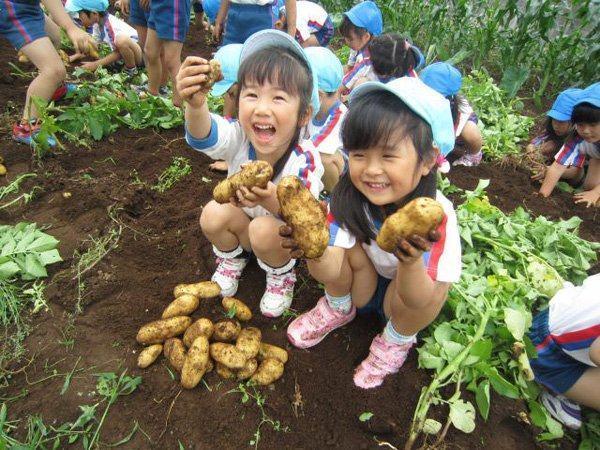 Học tập phương pháp dạy con tuyệt vời của người Nhật