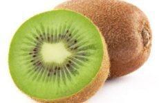 Kiwi- loại quả thần kỳ chống đông máu và giảm cân