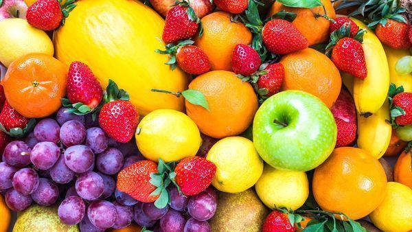 Nên mang theo hoa quả để ăn thêm trên đường những lúc dừng nghỉ
