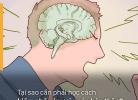 Cảm xúc là kẻ thù số một của thành công & đây là lý do tại sao cần học cách kiềm chế cảm xúc bản thân?