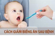 Dinh dưỡng cho trẻ sau ốm dậy, cách cho bé ăn nhanh hồi phục sức khỏe