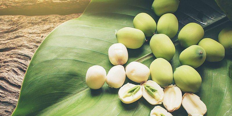 Ăn nhiều hạt sen có sao không?