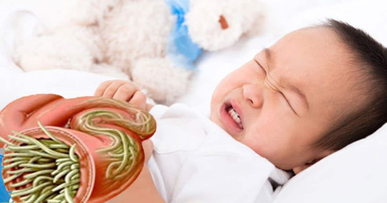 Mẹo tẩy các loại giun sán bằng phương pháp tự nhiên an toàn cho trẻ