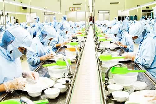 Công nhân sản xuất tại Nhà máy Chế biến nguyên liệu Yến sào Khánh Hòa